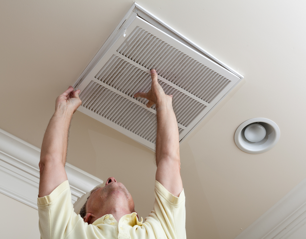 avoiding pest hvac system